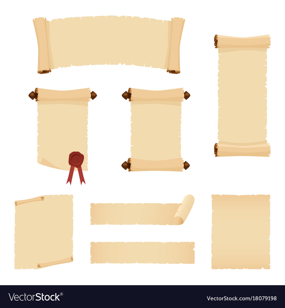 Parchment scrolls and sheets of old paper vector image