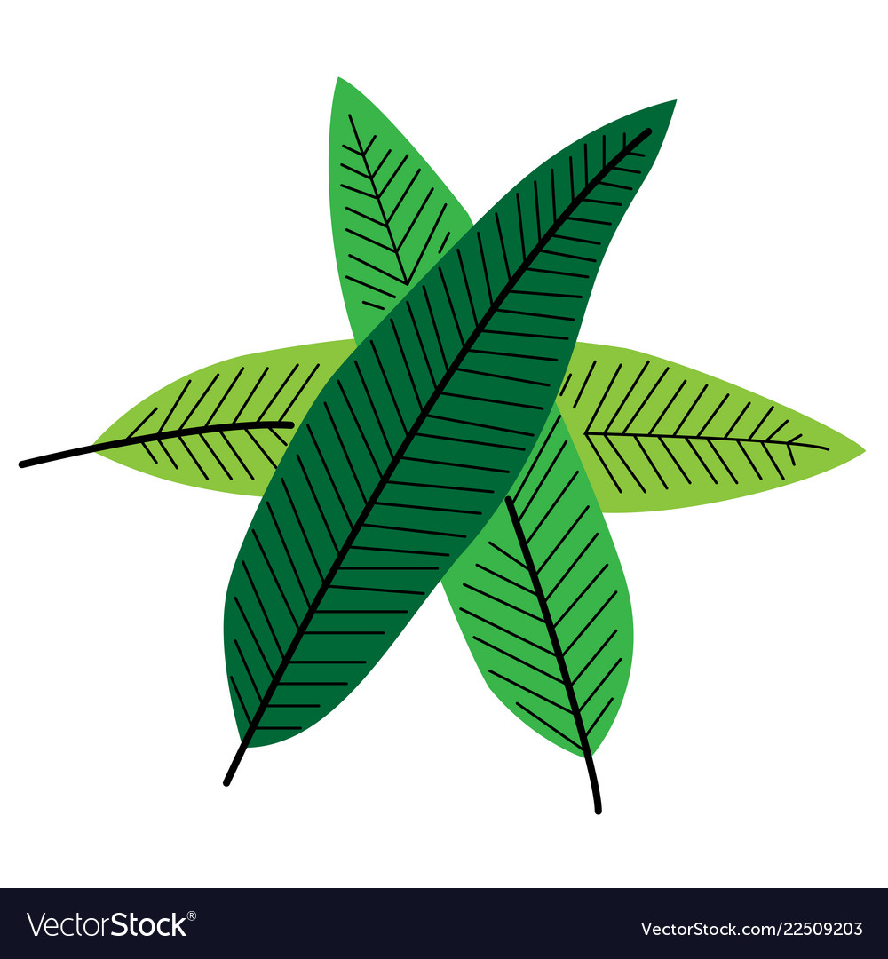Leaves drawn by hand