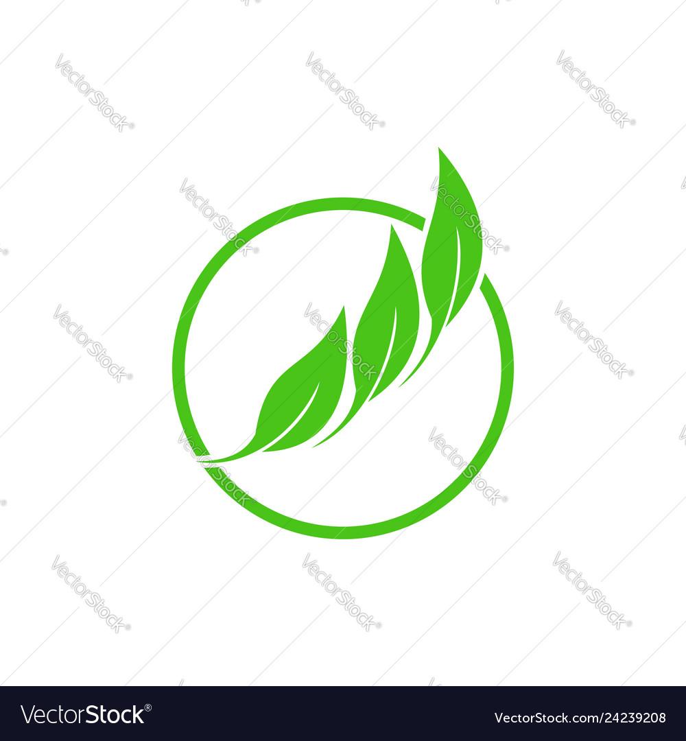 Circle 3 leaf