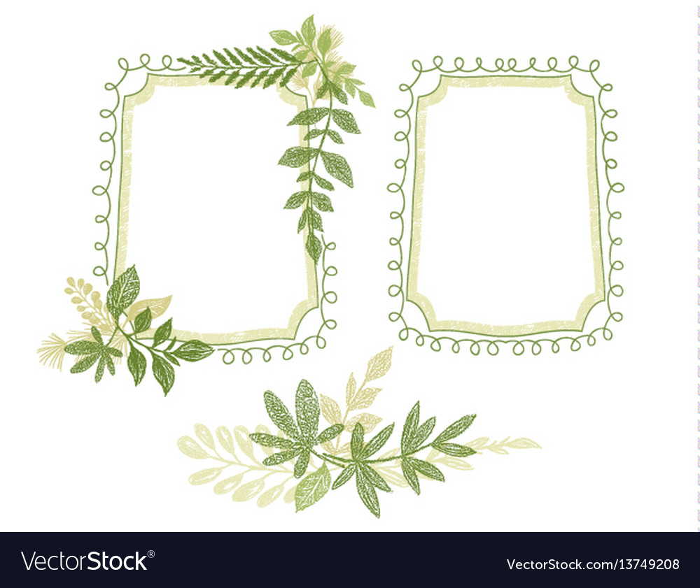 Green floral hand drawn frame leaves decoration