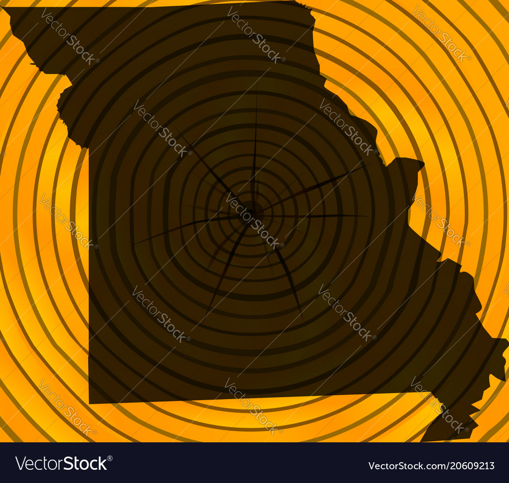 Missouri map on timber vector image