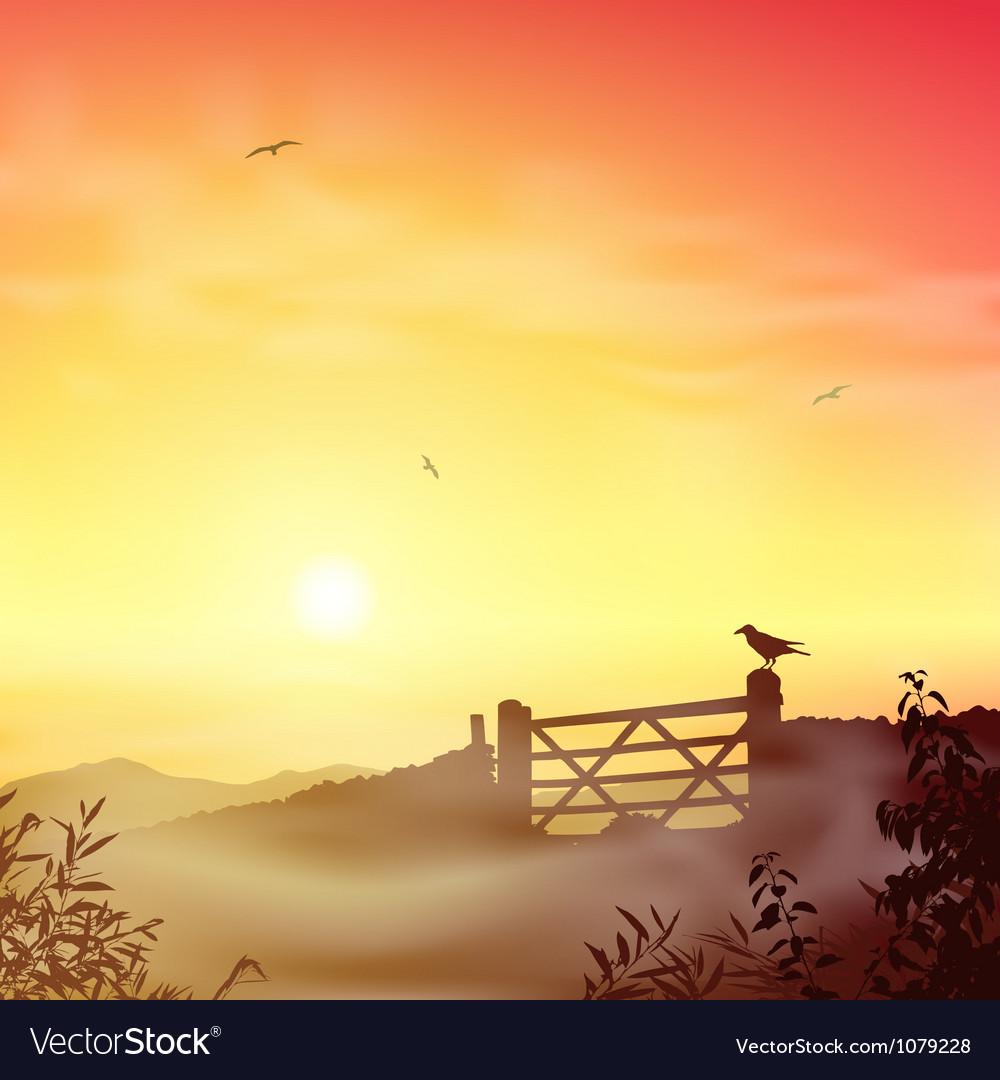 Misty Morning Landscape vector image