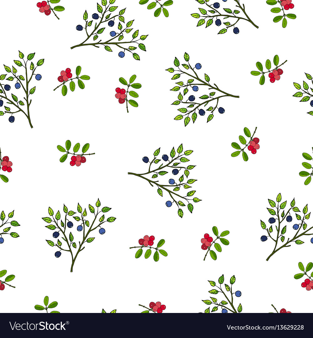 Seamless pattern with hand drawn wild berries