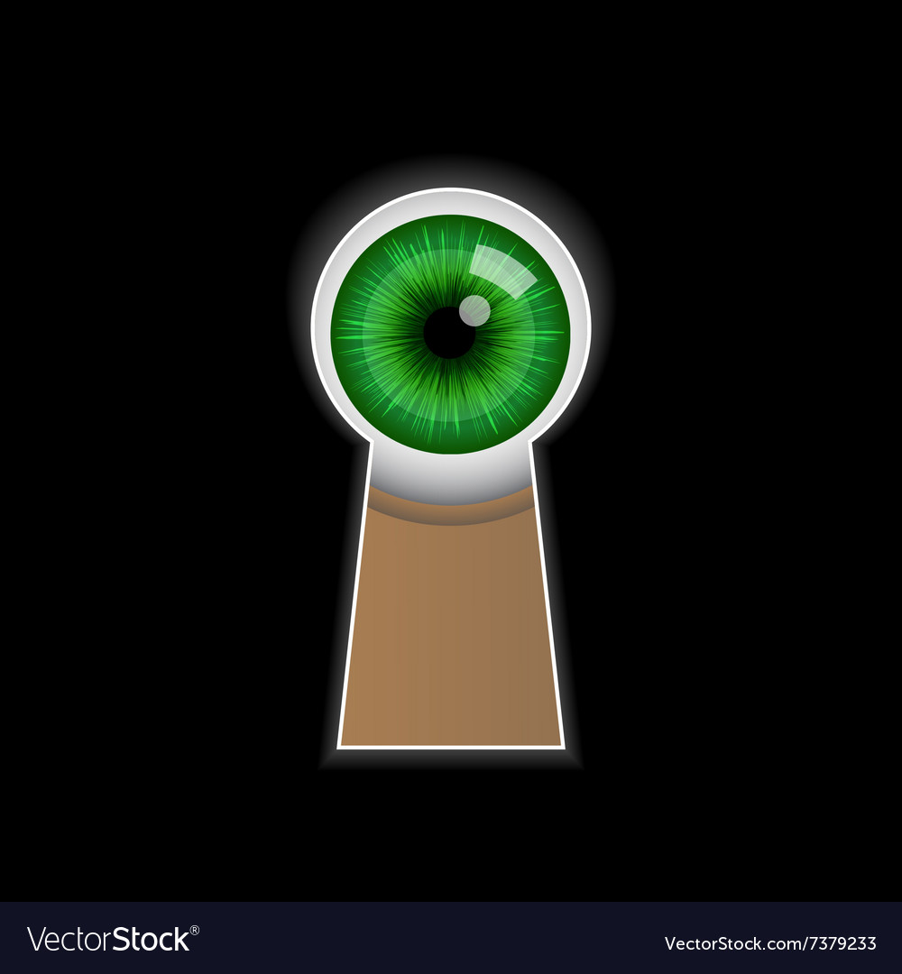 Cartoon green eye peeping through the keyhole vector image