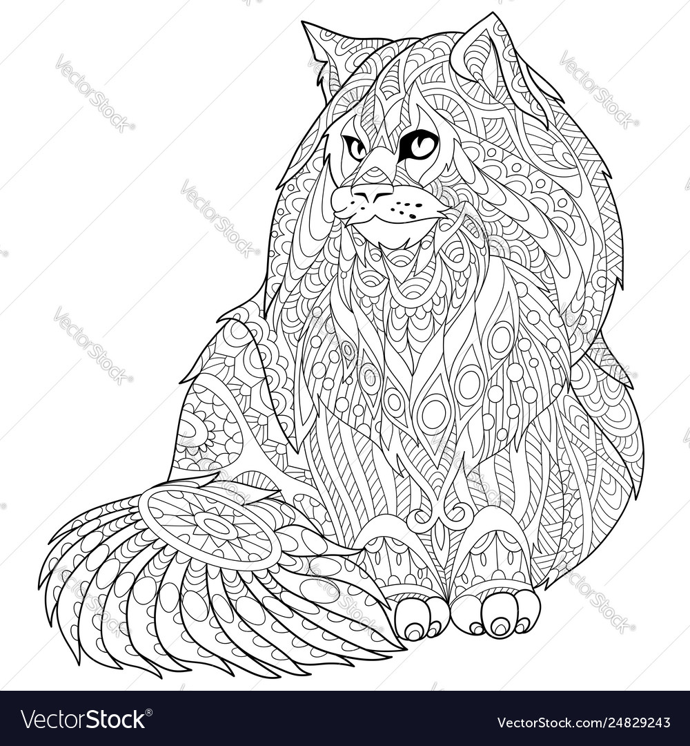 Maine coon cat adult coloring page