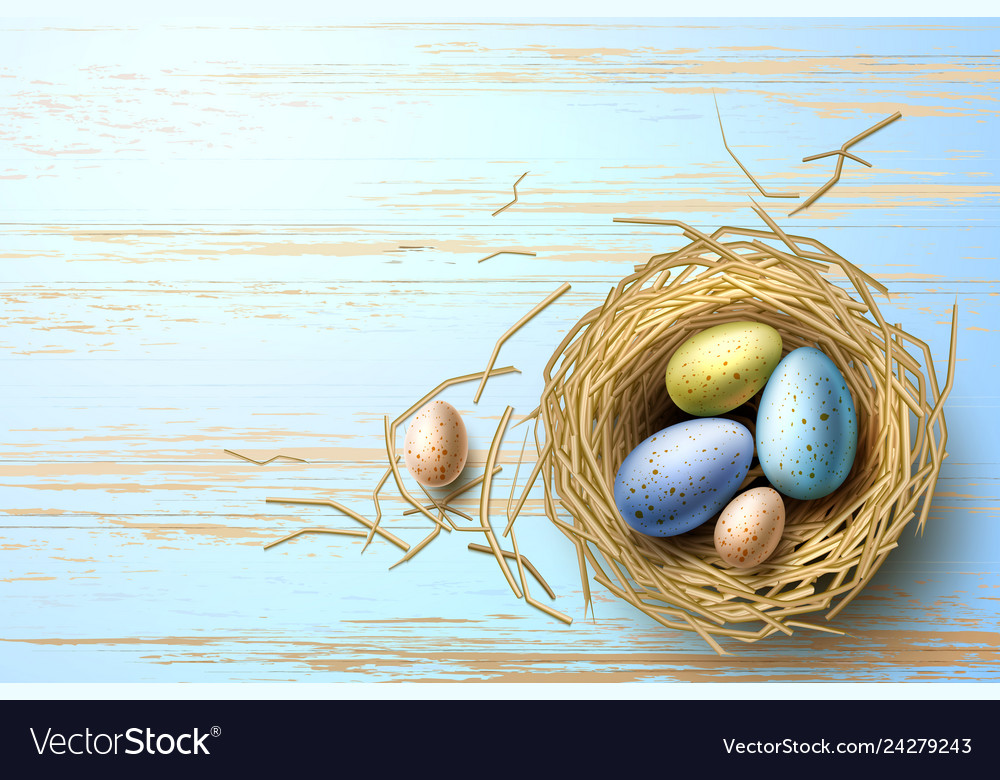 Quail chicken eggs in nest easter holiday