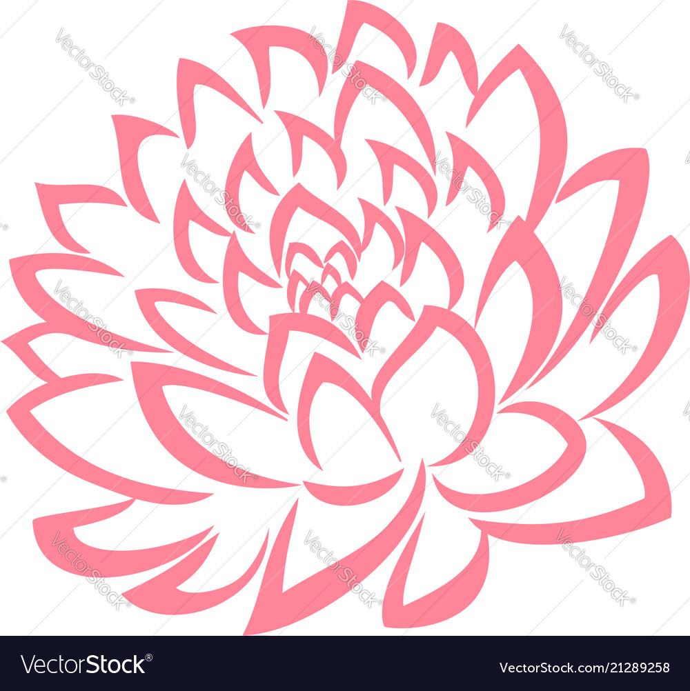 Rose color flower leaves