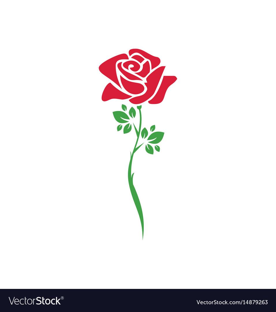 Rose flower plant logo Royalty Free Vector Image