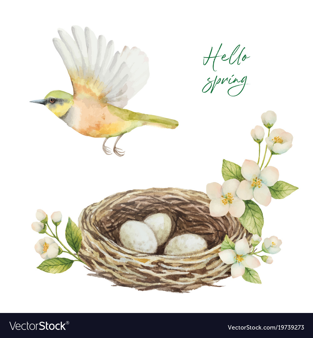 Watercolor wreath with bird nest with eggs
