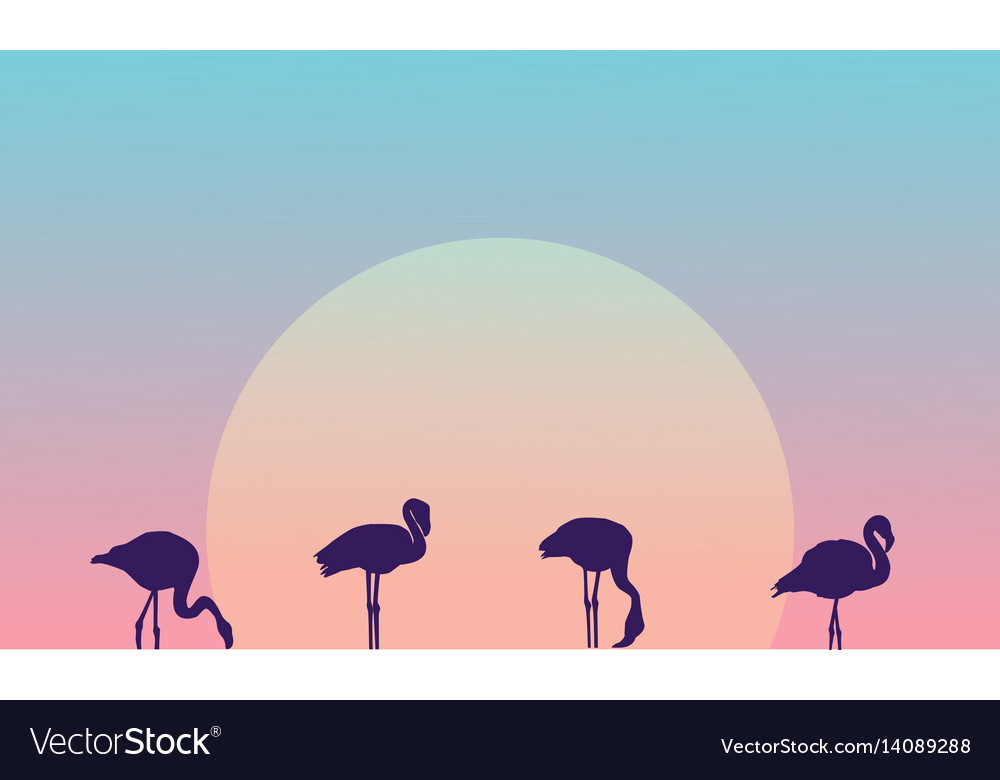 Beauty landscape at morning with flamingo vector image
