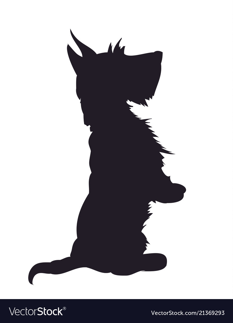 Dog asking for food silhouette