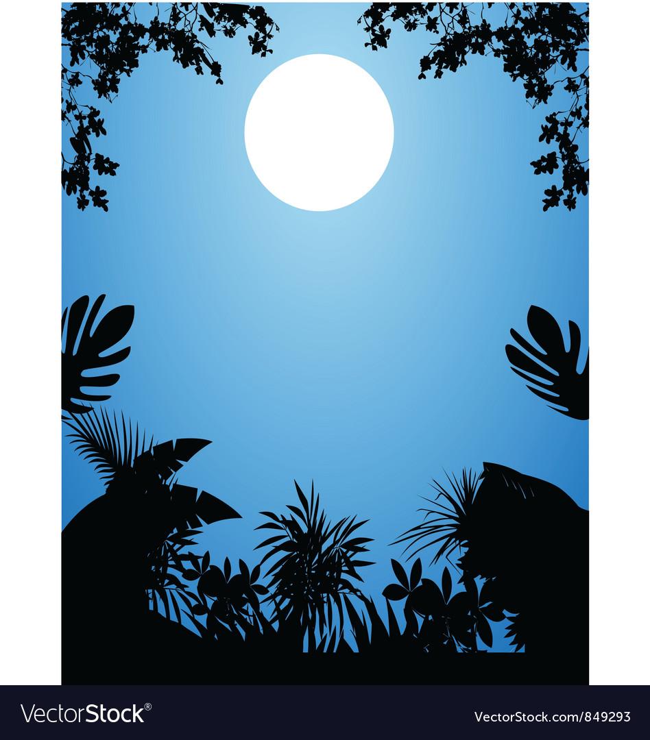 Jungle at night vector image