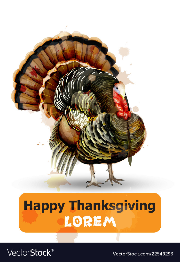Thanksgiving day turkey symbol isolated on