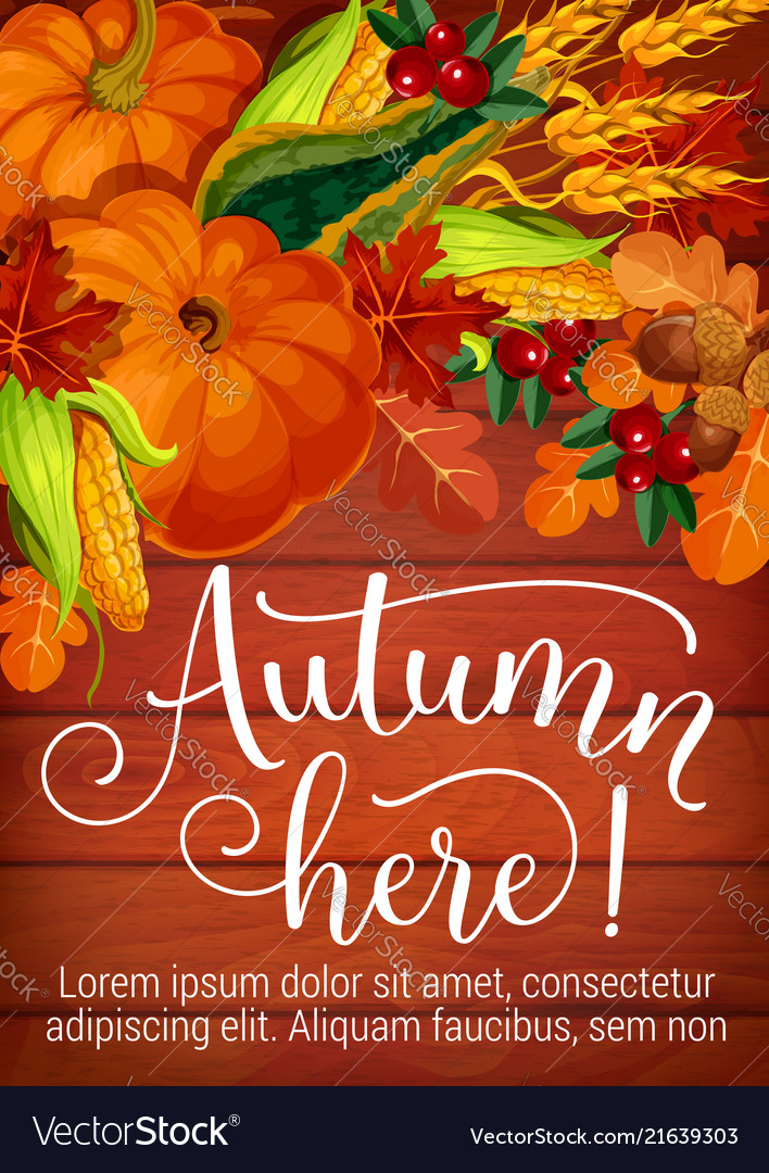 Autumn here seasonal foliage and harvest poster