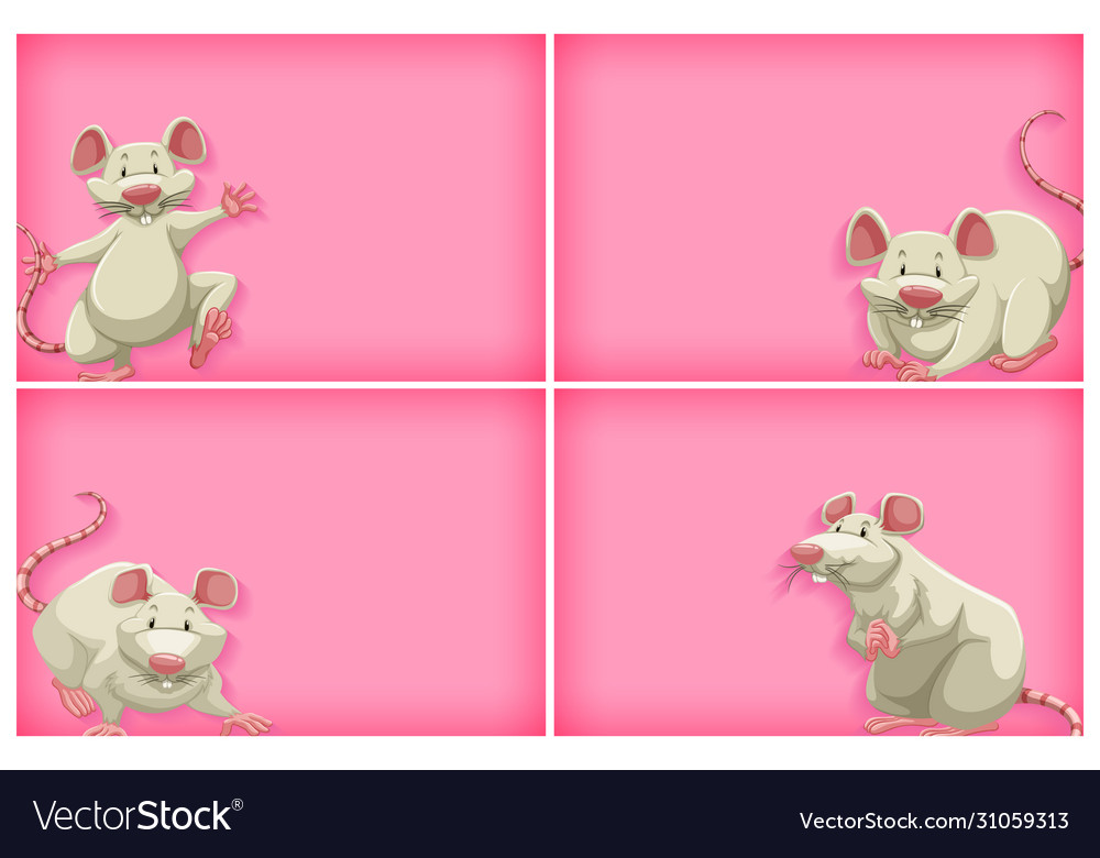 Background Template With Plain Color And White Vector Image