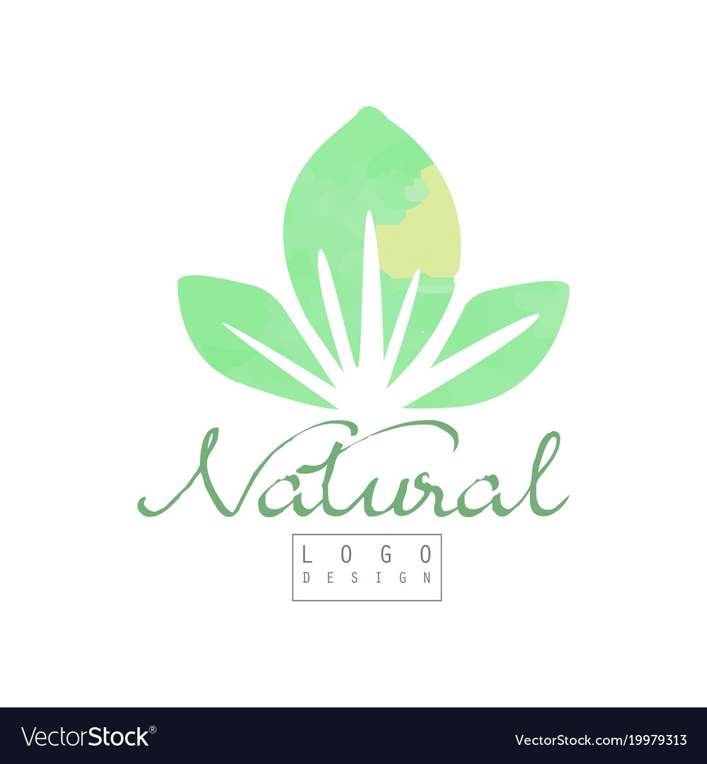 Natural logo template with abstract green leaves