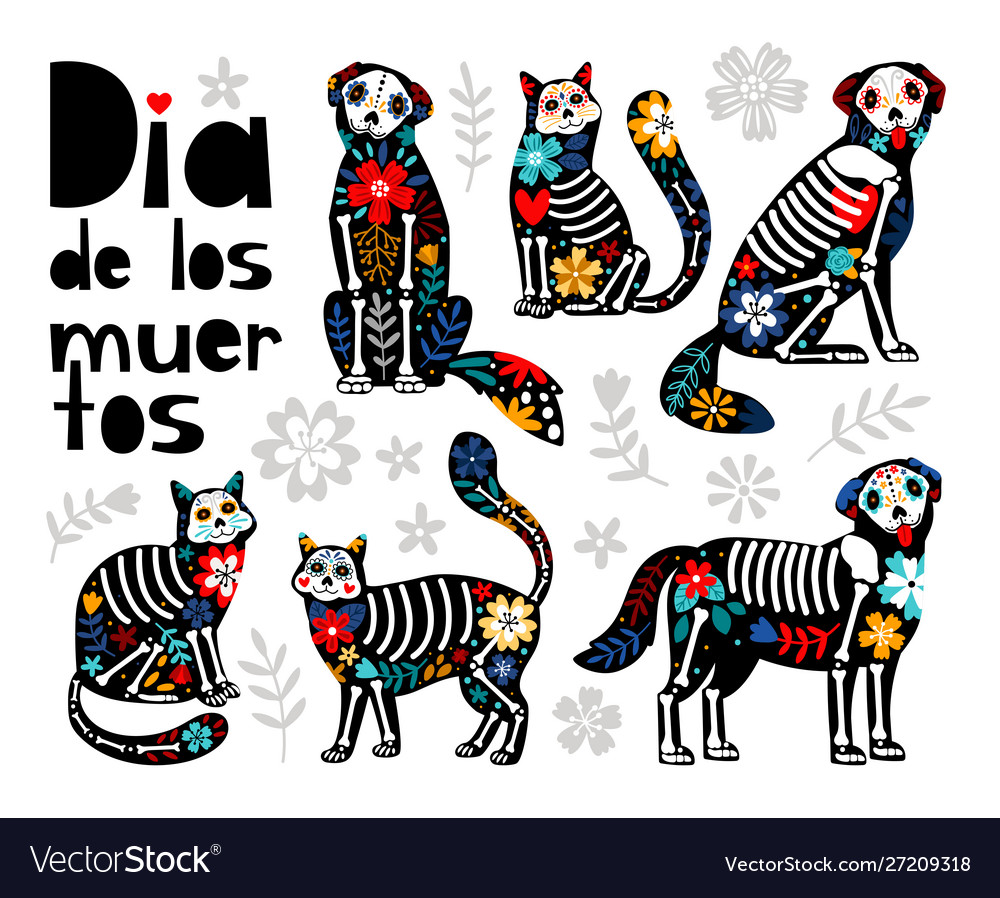 Mexican dead animals
