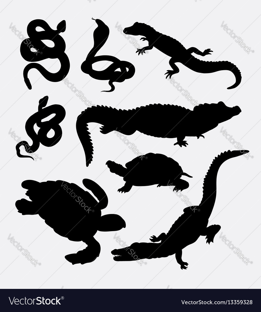 Animal collection silhouette
