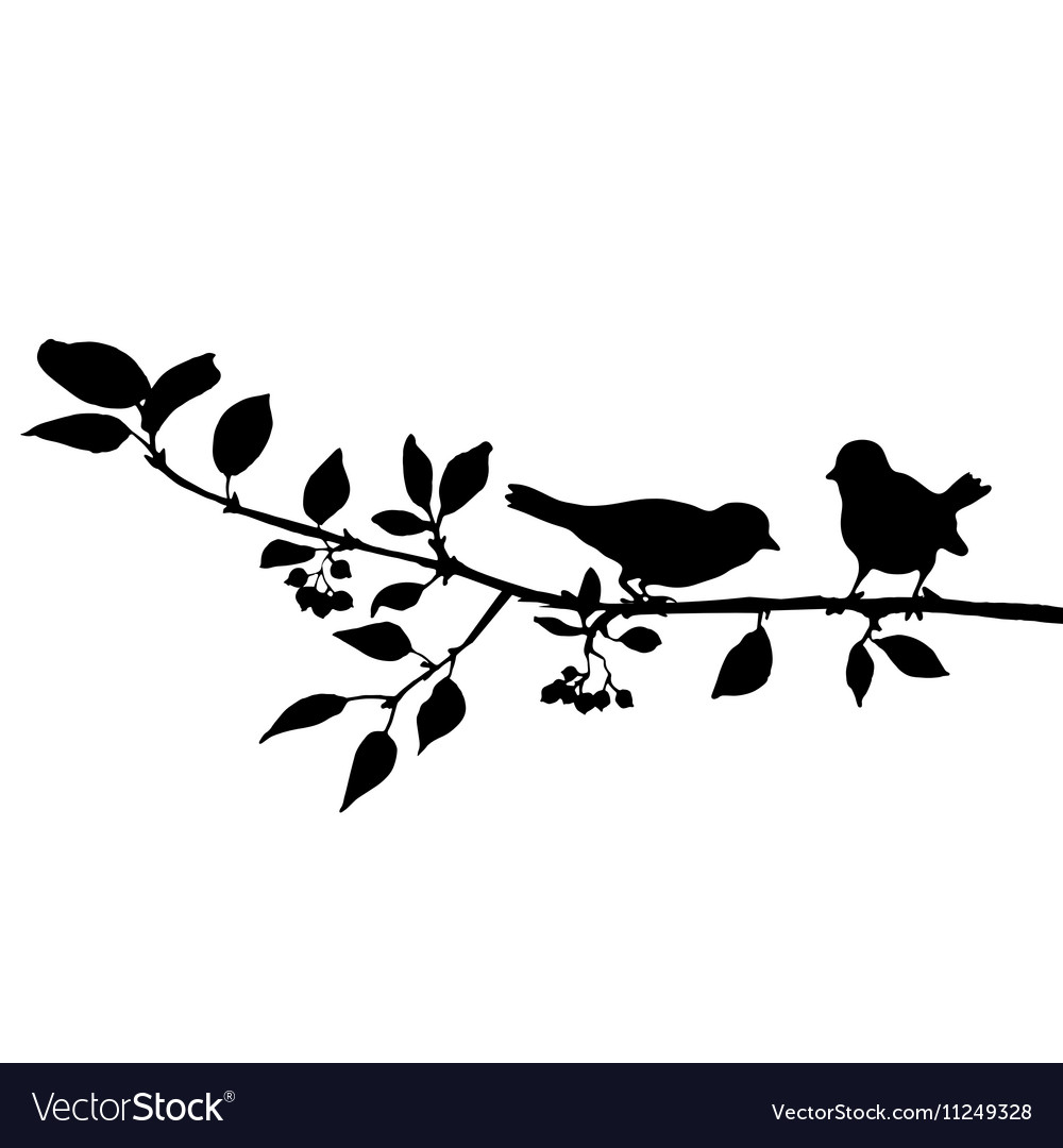 Birds at tree silhouettes vector image