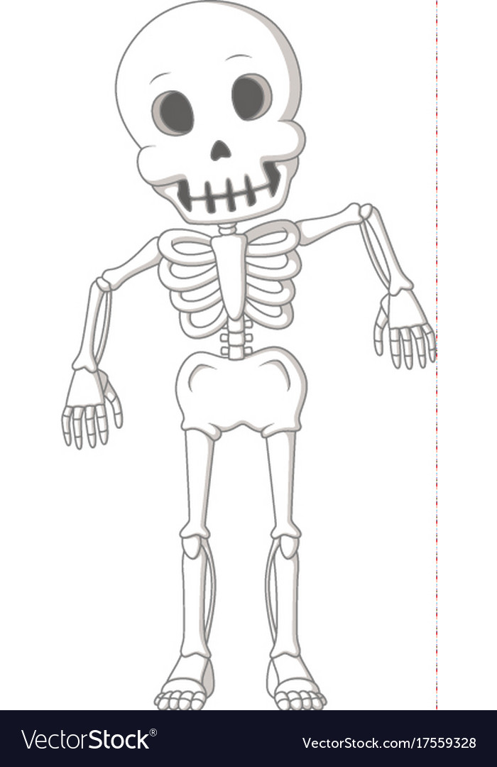 Cartoon Funny Human Skeleton Dance Royalty Free Vector Image
