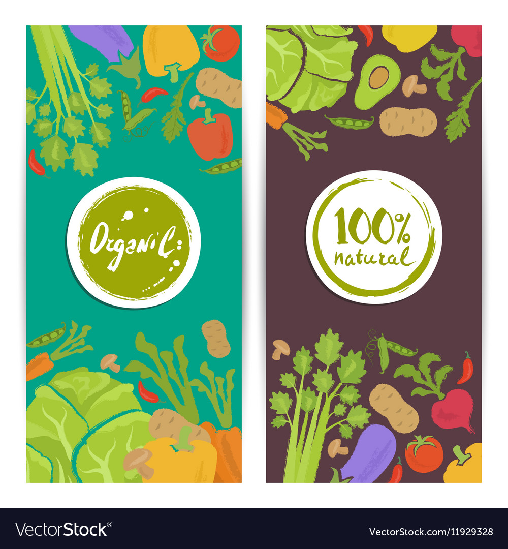 Organic food vertical flyers set