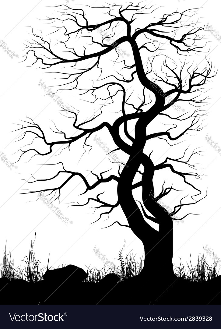 Silhouette of old tree and grass over white