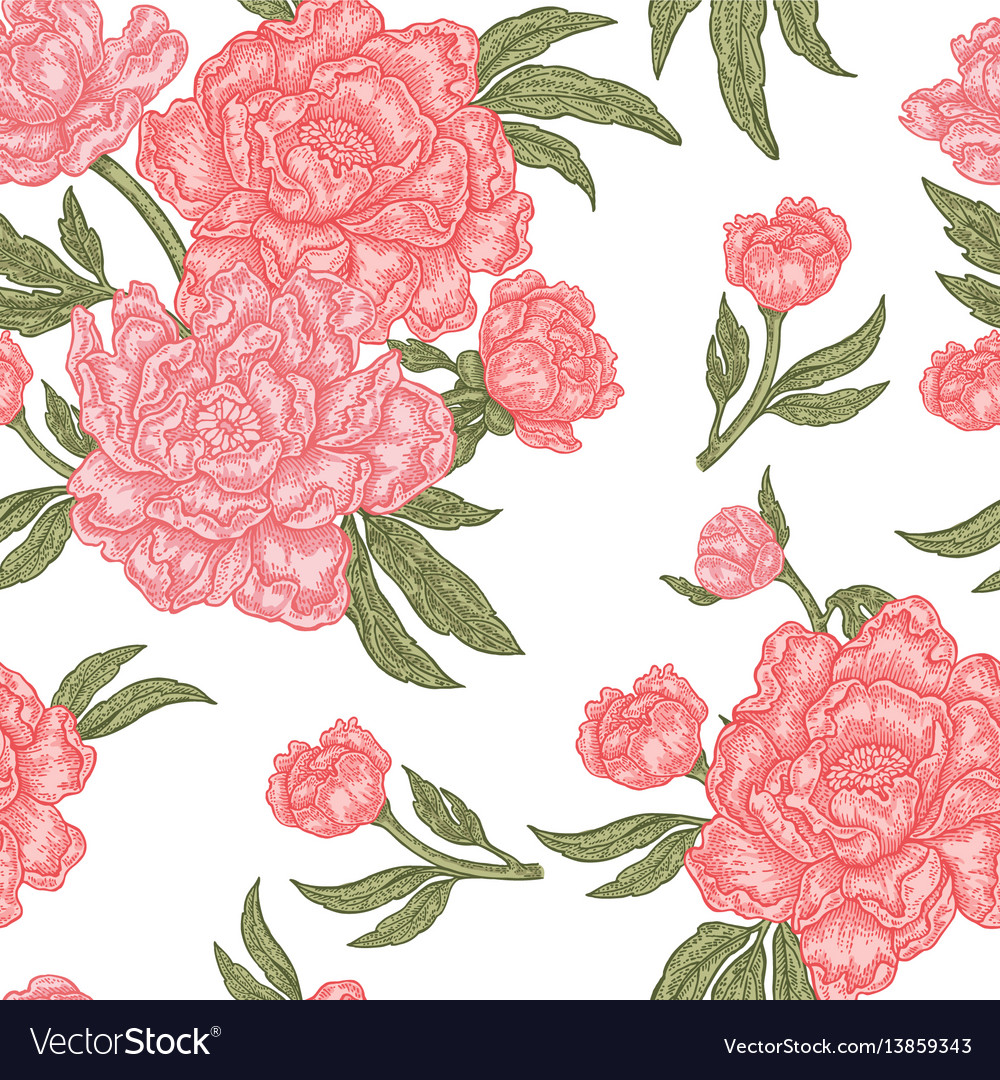 Vintage peony flowers buds and leaves seamless vector image