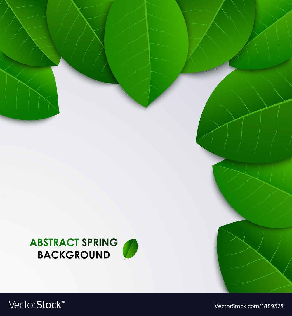 Abstract Spring Fresh Background With Green Leaves