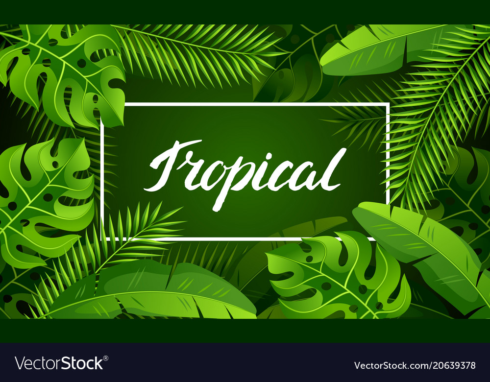 Banner with tropical palm leaves exotic tropical