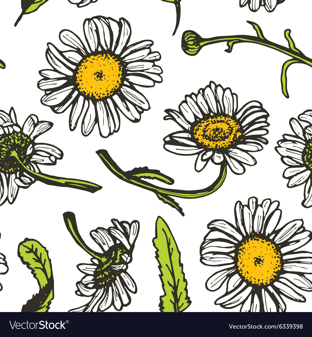 Beautiful vintage background with black daisies