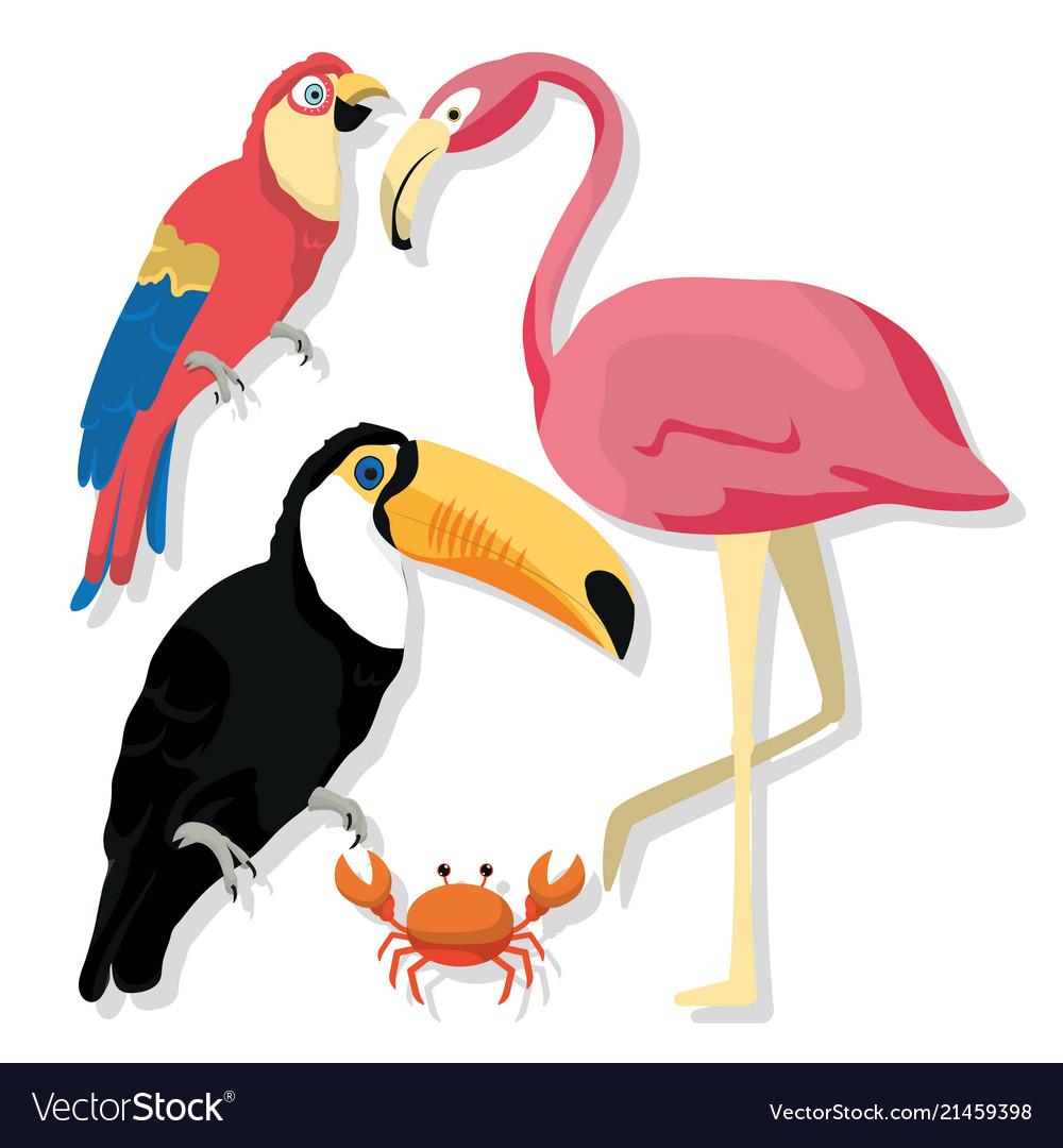 Exotic Birds Cartoons Royalty Free Vector Image