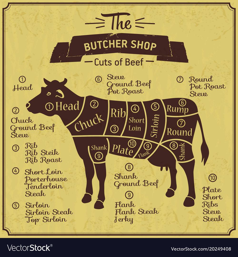 Butcher shop of cow farm vintage