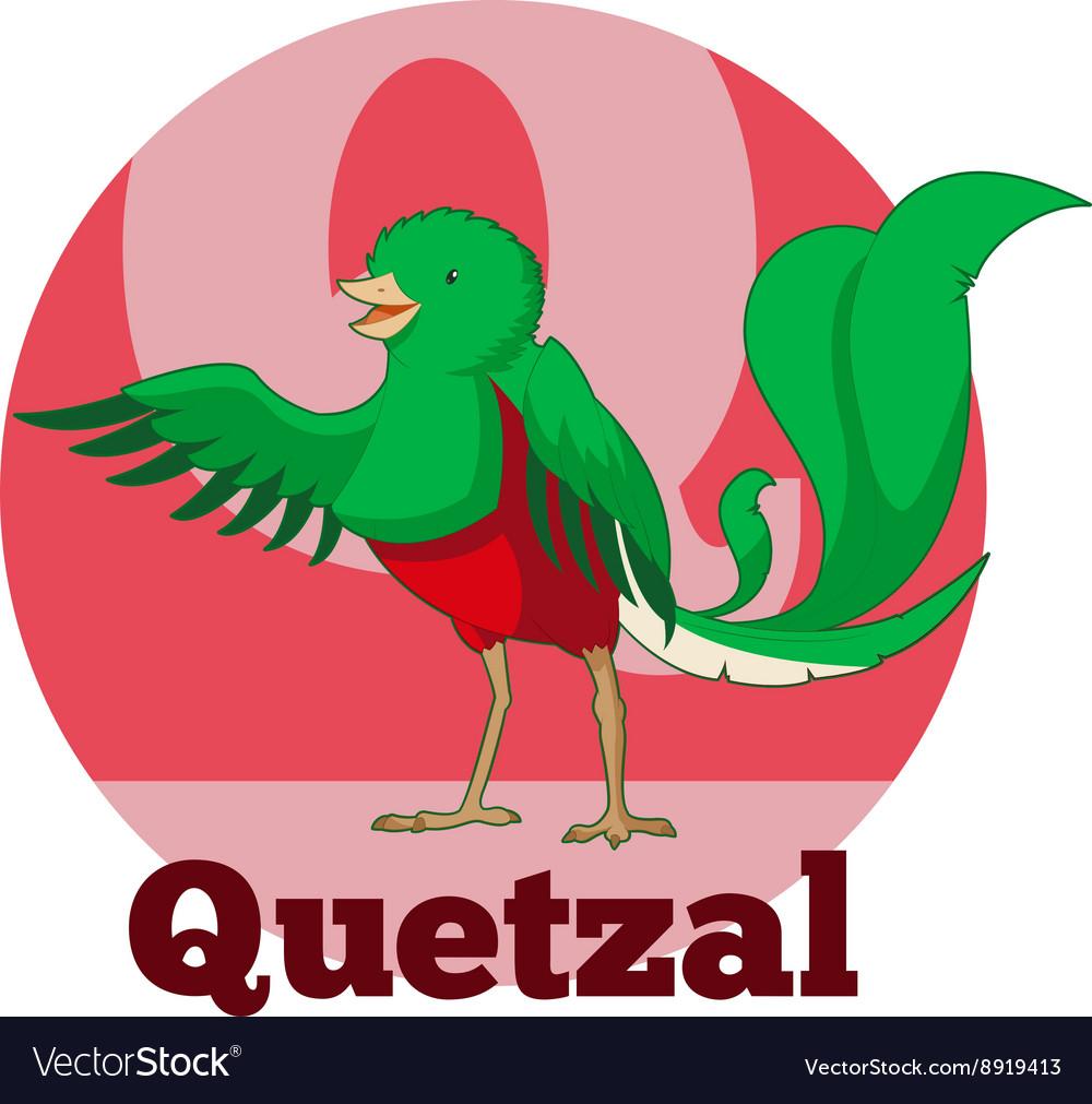ABC Cartoon Quetzal vector image