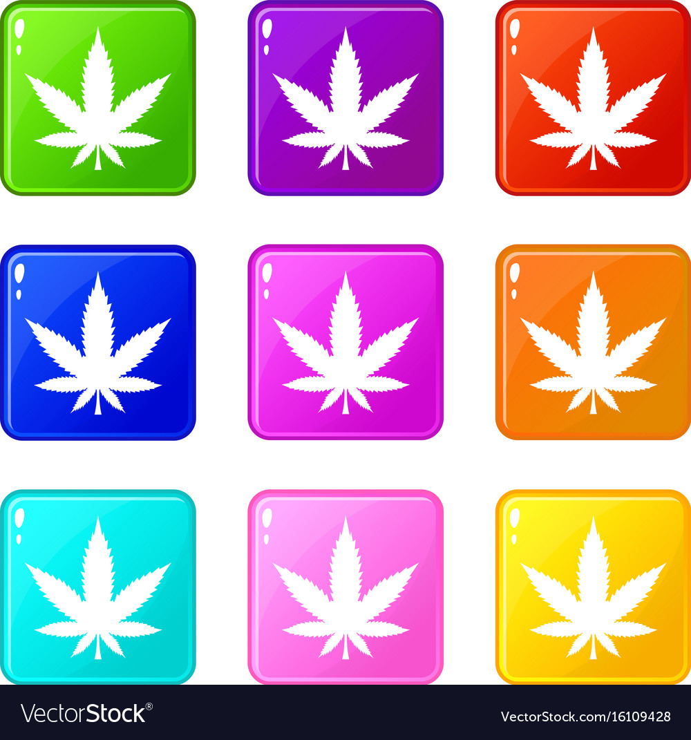 Cannabis leaf set 9 vector image