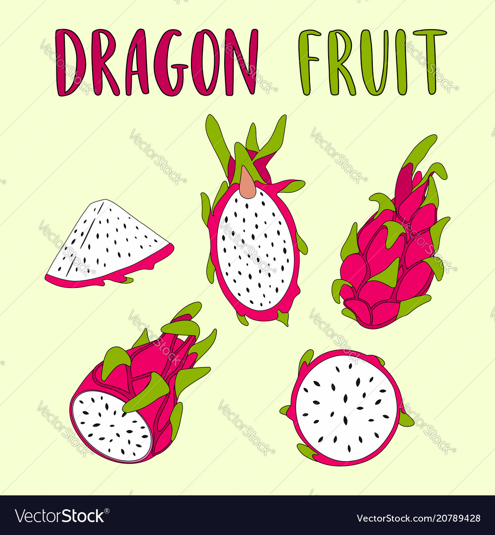 Whole and sliced dragon fruit isolated on light