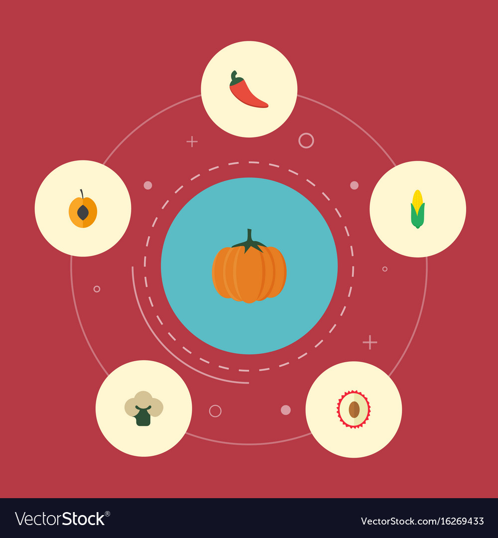 Flat icons broccoli litchi gourd and other vector image