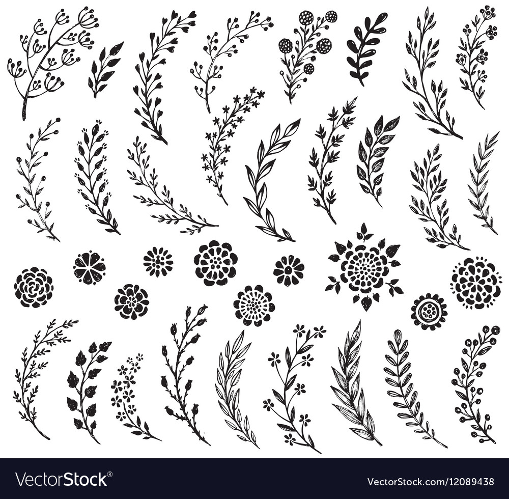 Big set of hand drawn flowers and branches