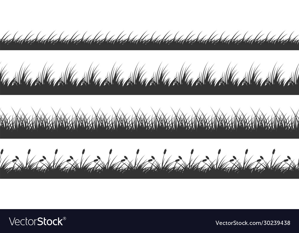 Grass borders planted meadow silhouette