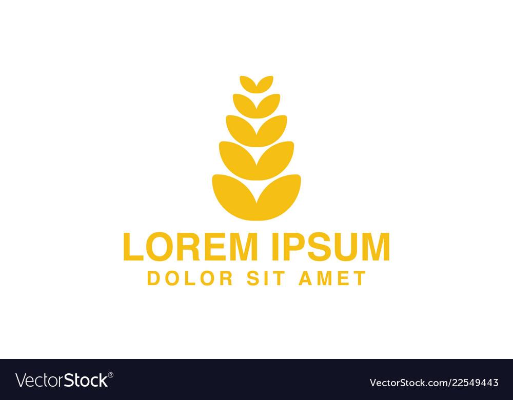 Wheat grain agriculture farm logo designs