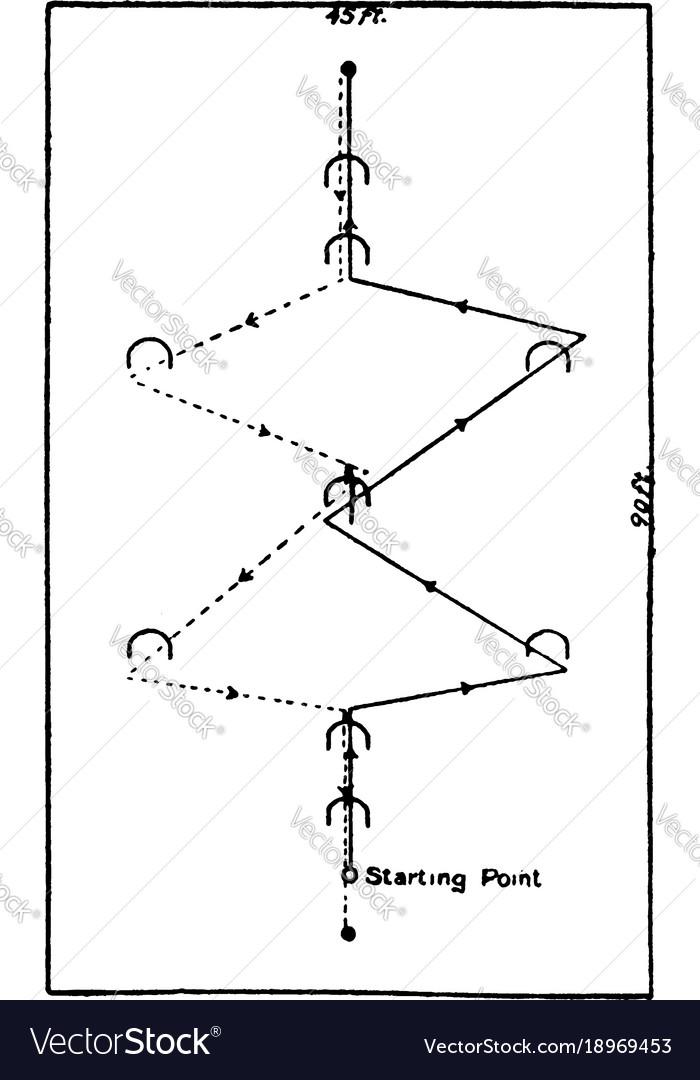 Croquet Ground Diagram Vintage Royalty Free Vector Image