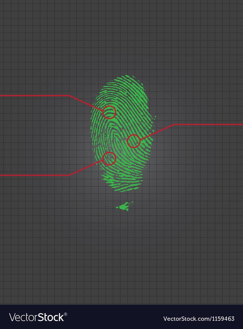 Fingerprint vector image