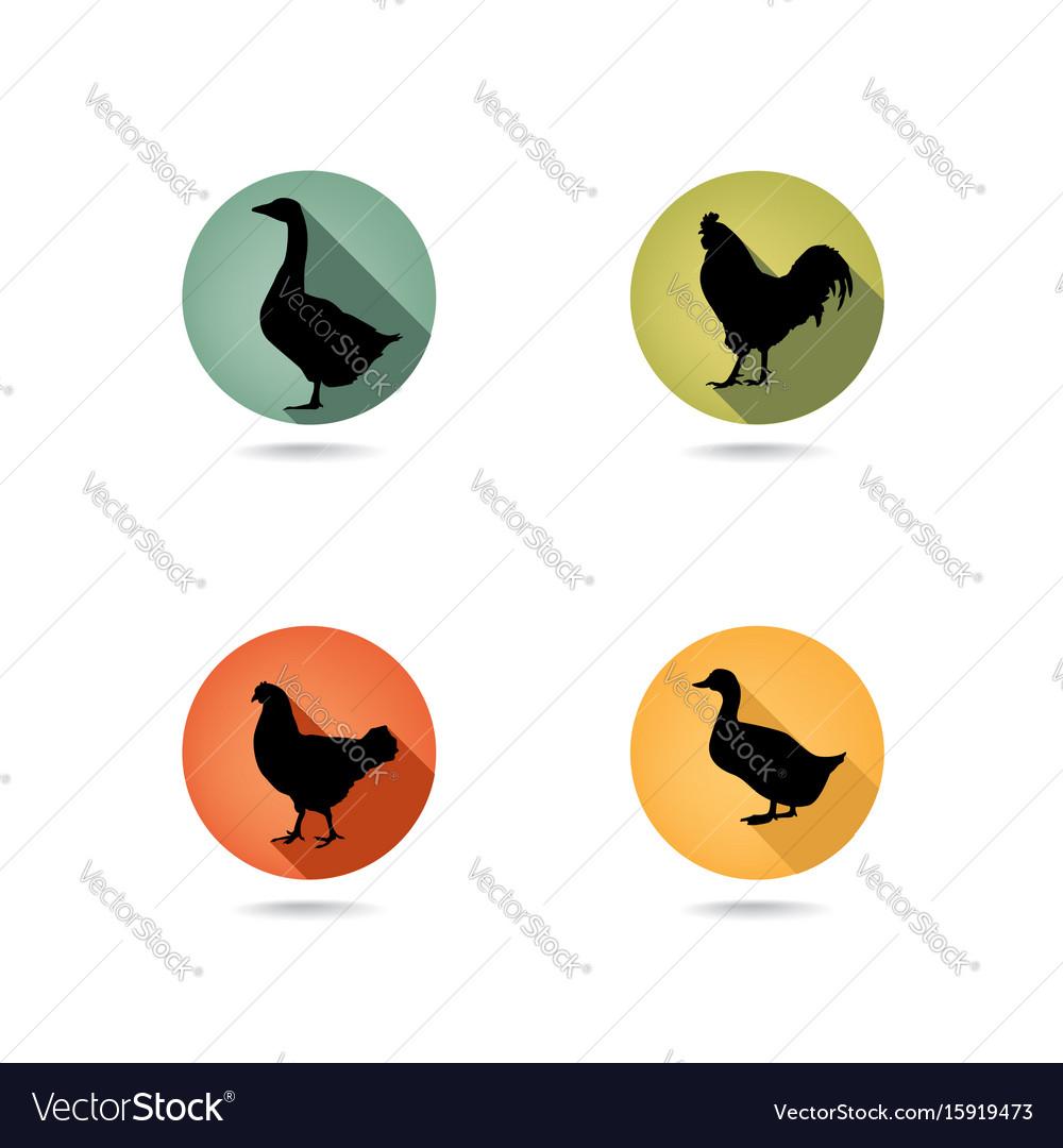 Farm birds silhouette animals set livestock icons
