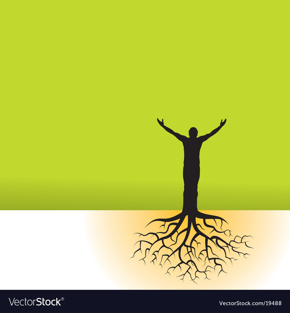 Tree man roots vector image