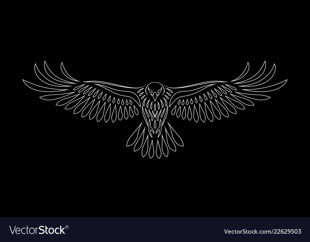 Engraving of stylized hawk on black background