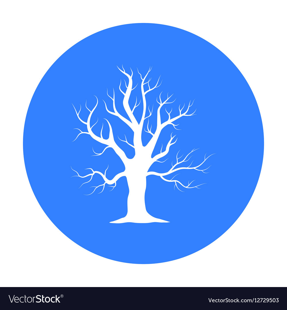 Old tree icon in black style for web