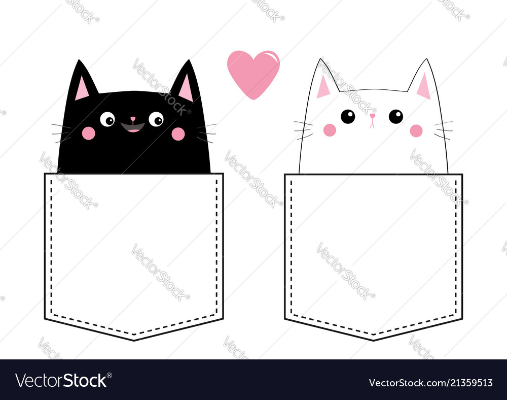 Black white cat love couple in the pocket pink