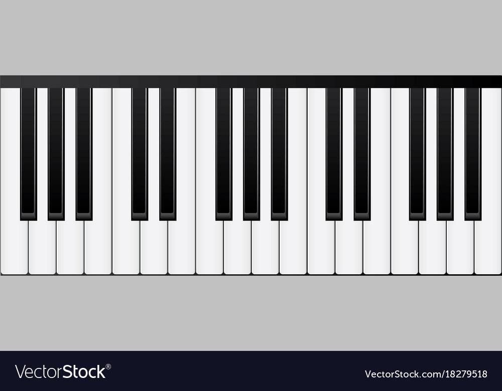 Keyboard instrument vector image