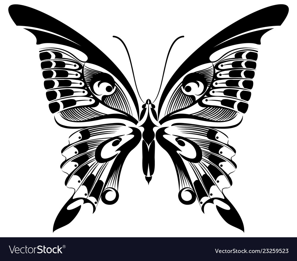 Butterfly Black White Silhouette Design Royalty Free Vector