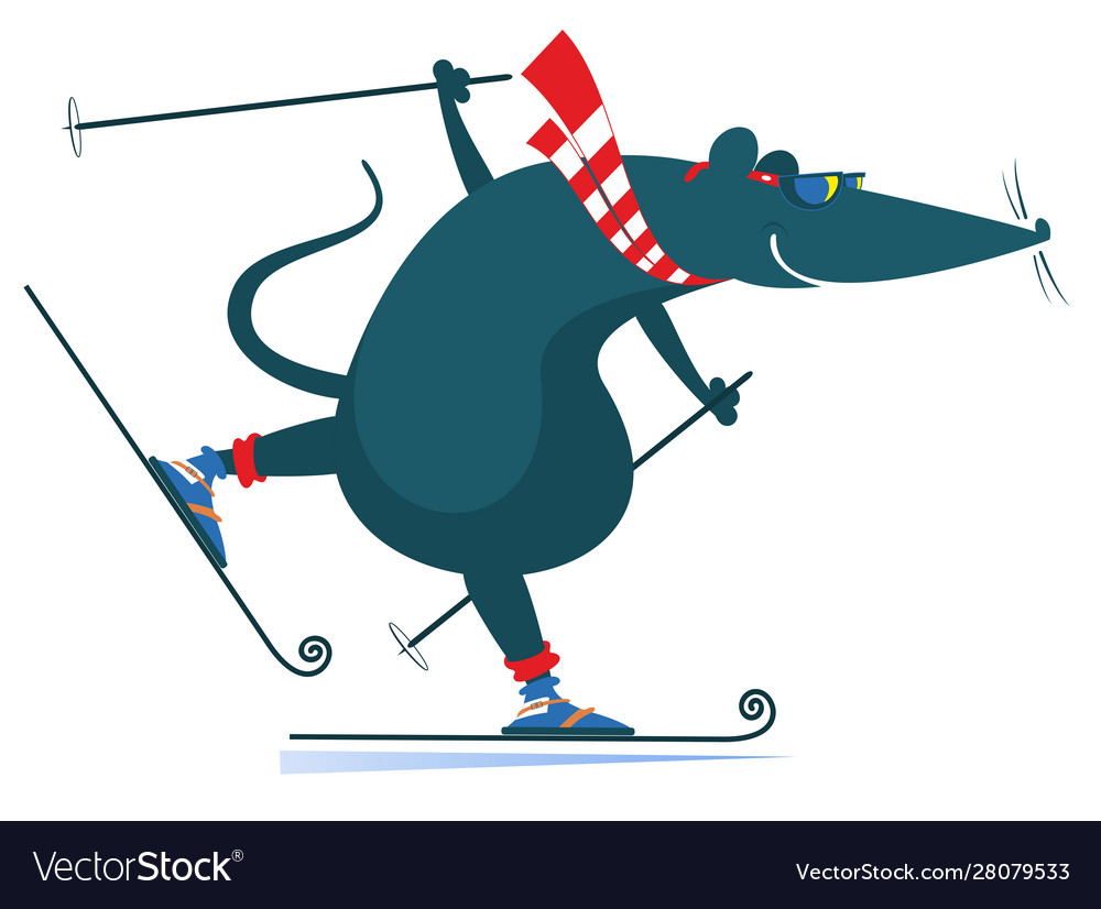 Cartoon rat or mouse a skier