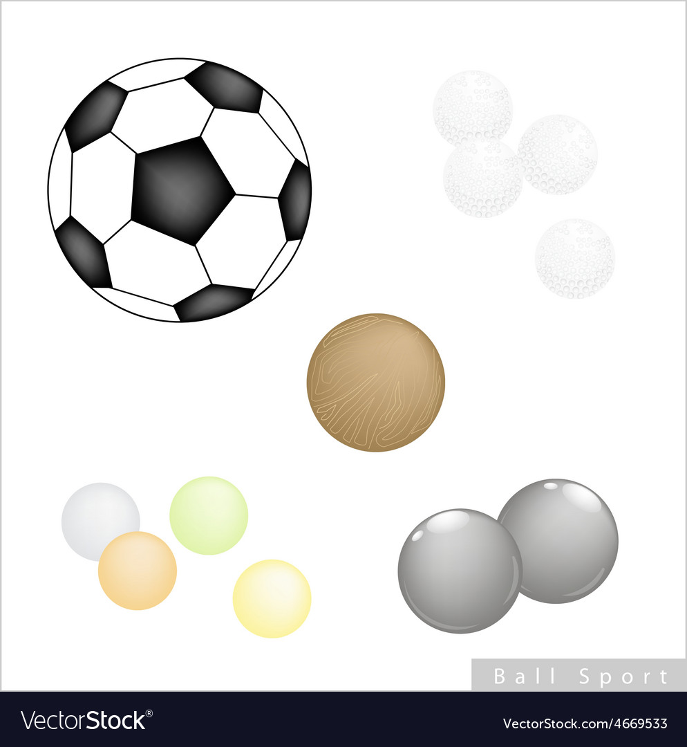 Set Of Different Sport Balls On White Background Vector Image